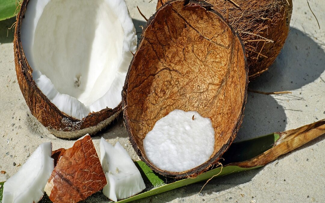 Coconut Meat Nutrition
