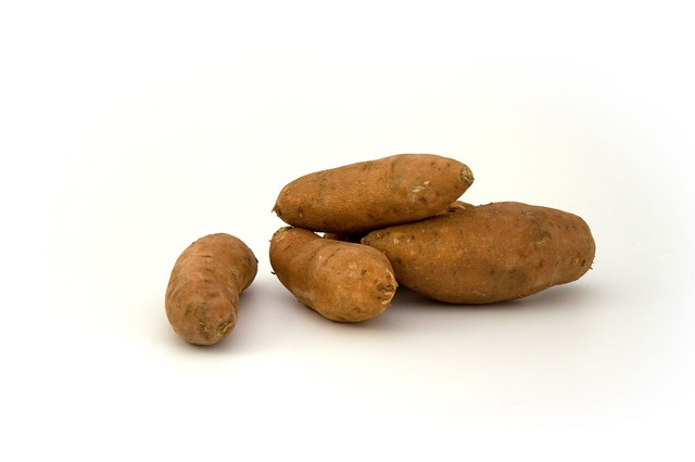 Best Immunity Foods for Kids